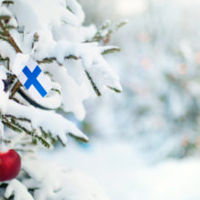 Snow covered christmas tree with Finland flag attached