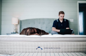 Man and dog sitting on mattress. Man is looking up sleep tips on a laptop