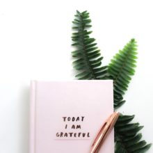 Pink gratitude journal with green fern behind it